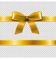 golden bow isolated vector image