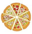 Tasty Sliced Pizza vector image