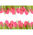 Holiday background with pink beautiful flowers vector image