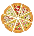 Tasty Sliced Pizza vector image