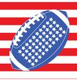 usa football flag 1 vector image vector image