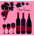 Red wine set vector image