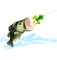 Bass and lure vector image