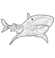 Shark Coloring for adults vector image