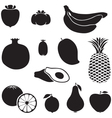 Silhouette fruits vector image vector image
