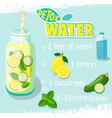 recipe for detox cocktail vector image