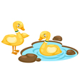 duck family vector image
