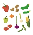 Fresh Vegetables Collection vector image