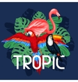 Tropical birds print design with palm leaves vector image