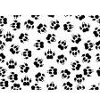 wildcat foils vector image