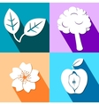 Four colorful icons with nature elements vector image