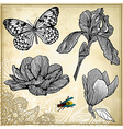 set of hand drawing flower and butterfly vector image
