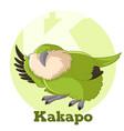 abc cartoon kakapo vector image