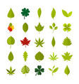 leaf icon set flat style vector image
