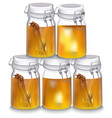 honey jar realistic cinnamon vector image
