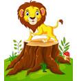 happy cartoon lion sitting on tree stump vector image