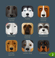 animal faces for app icons-dogs set 1 vector image