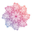 mandala floral flower oriental circle vector image