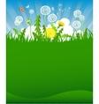 Summer dandelion background vector image