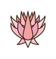 beautiful pink lotus flower icon vector image