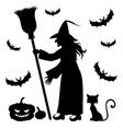 witch vampire cat vector image