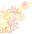 Autumn macro leaf of maple bacground vector image vector image
