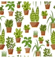 House plant seamless pattern vector image