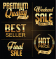 premium quality and sale golden retro sign vector image