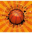 basket ball vector image vector image