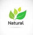 Natural logo design vector image vector image