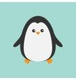 Cute penguin Cartoon character Arctic animal vector image