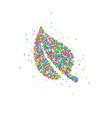 abstract leaf splash vector image
