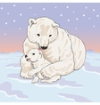 Polar she-bear with cub vector image