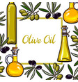 square frame of olive branches and oil bottles vector image