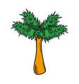 palm tree pop art cartoon vector image
