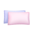 Two pillows vector image