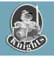 Knight Metal Emblem vector image