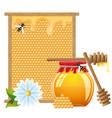 honey 04 vector image