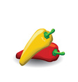 Red yellow peppers vector image