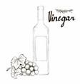 wine vinegar in the bottle outline vector image