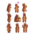 set with funny bear forest animal waving by paw vector image