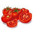 fresh raw red sliced tomatoes vector image vector image