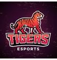 Premade tiger mascot Sport logo design vector image