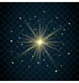 Shine star glitter vector image