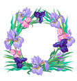 botanical pink and violet iris wreath vector image