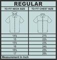 Men shirt regular size vector image