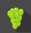 grapes cartoon flat icondark blue background vector image