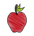 apple fruit sweet vector image