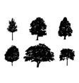 tree collection silhouette vector image