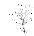 Birds and tree silhouettes vector image